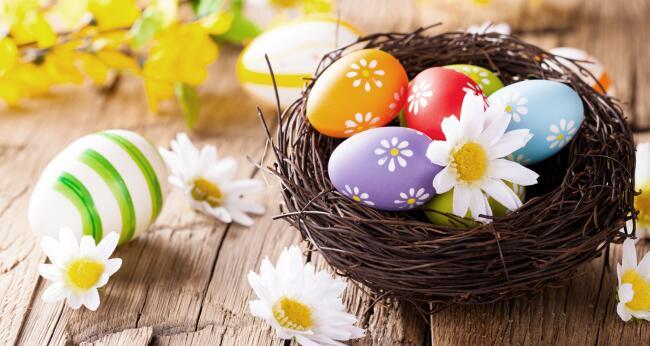 Auguri Di Pasqua Auguri Buona Pasqua Auguri Pasquali Divertenti